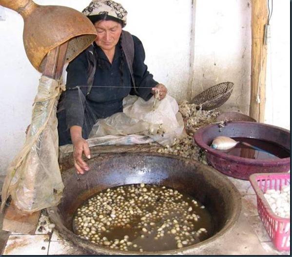 Mujer frente capullos en caldera